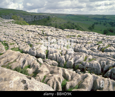 Limestone pavement above Malham Cove, Malhamdale, Yorkshire Dales National Park, North Yorkshire, England, UK. - Stock Photo