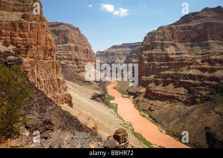 Orange coloured Colorado River flowing through the Grand Canyon at the North Rim. - Stock Photo