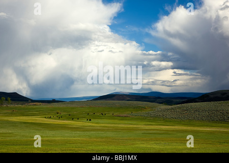 Springtime view southeast of ranchland towards the Sawatch Range of mountains and clearing stormy skies taken from - Stock Photo