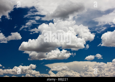 Puffy white cumulous clouds against a clear blue Colorado sky - Stock Photo