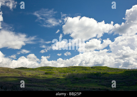 Puffy white cumulous clouds against a clear blue sky Highway 50 west of Sapinero Colorado USA Curecanti National - Stock Photo