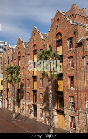 Historic Australasian Steam Navigation Company Building The Rocks Sydney New South Wales Australia - Stock Photo