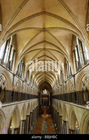 Salisbury Cathedral Nave - Wiltshire Stock Photo, Royalty ...