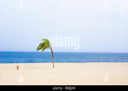 Child running on Sandy Beach towards Ocean with One Palm Tree - Stock Photo