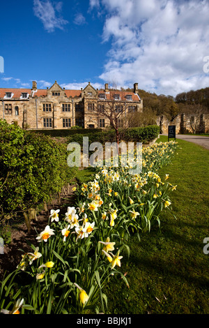 Mount Grace Priory in Spring near Osmotherley North Yorkshire - Stock Photo