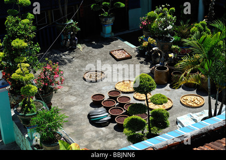 Food drying in a courtyard in cultural relic Nha Lon Great House, Lon Son Commune, Long Son Island, Ba Ria-Vung - Stock Photo
