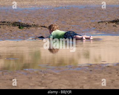 Toddler in shorts and t-shirt laying on his tummy in a pool of sea water left by the receding  tide at Instow, North - Stock Photo