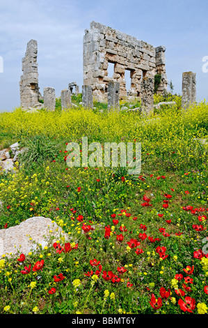 Ruins from the Byzantine era, Dead Cities near Aleppo, Syria, Middle East, Asia - Stock Photo