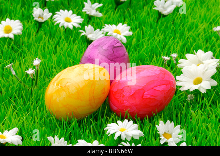 Colorful Easter eggs on flower meadow with daisy flowers - Stock Photo