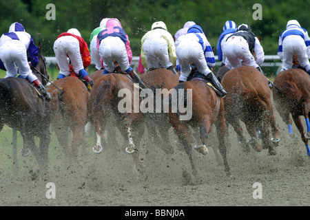 All weather racing at Lingfield - Stock Photo