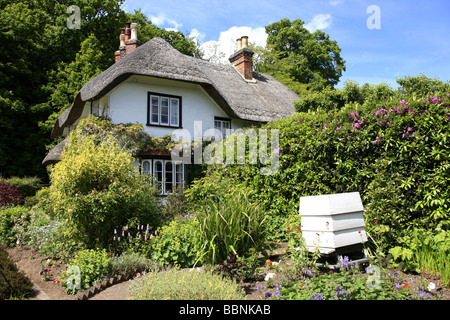 A white painted Thatched roof Cottage and beehive at Swan Green Lyndhurst in Hampshire England - Stock Photo