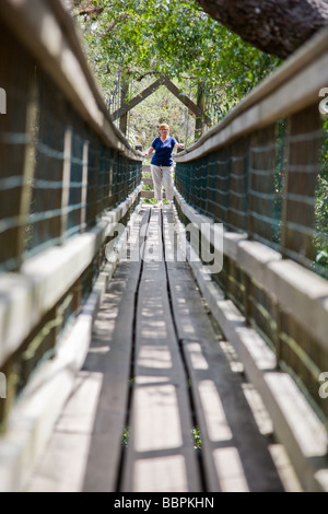 Tourists cross the canopy walkway leading to the canopy tower at Myakka River State Park in Florida. - Stock Photo