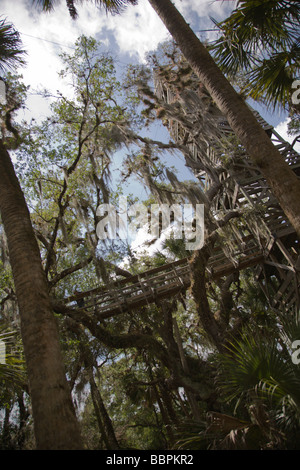 A canopy walkway leads to a viewing tower at the Myakka River State Park in Florida. - Stock Photo