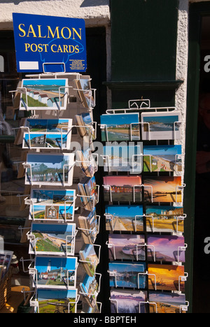 Salmon postcards for sale on a stand outside a gift shop in Southwold Suffolk Uk - Stock Photo