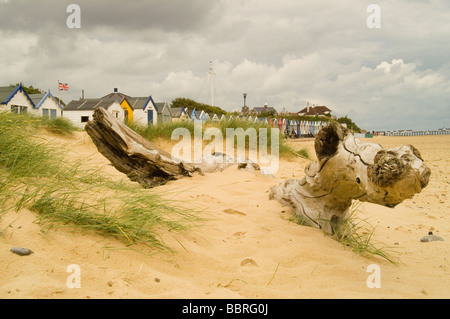 Dead tree trunk washed on beach against dramatic sky - Stock Photo