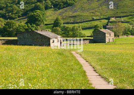 Footpath with barns and traditional hay meadows near Muker in Upper Swaledale. Yorkshire dales National Park.