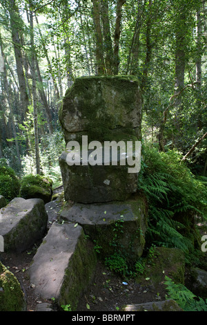 St Patricks chair a rock cut throne ancient druidic site at altadaven in favor royal forest in county tyrone northern - Stock Photo
