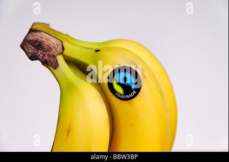 Detail of Fairtrade logo on organic bananas UK - Stock Photo