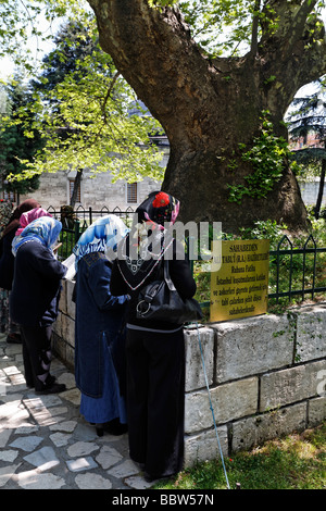 Women, Muslima, praying at a tomb under a tree, Prince mosque Sehzade Camii, Istanbul, Turkey - Stock Photo