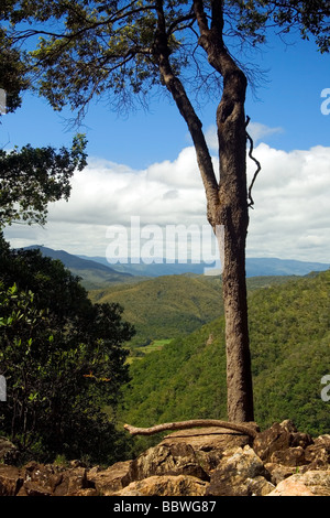 On the Way to Agua Fria Waterfall Chapada dos Veadeiros Veadeiros Tableland Goias Brazil - Stock Photo