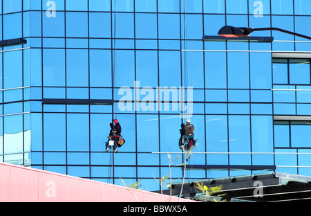 Two abseiling window cleaners washing windows on a skyscraper hanging by ropes with buckets attached - Stock Photo