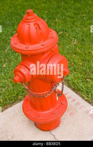 bright red fire hydrant against a green grass background - Stock Photo