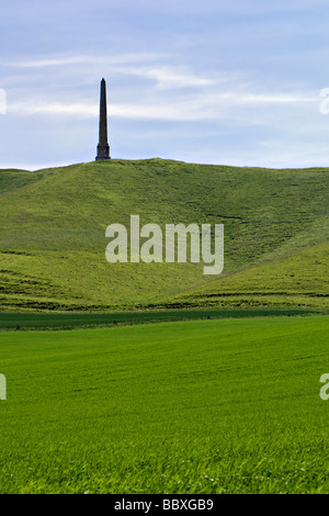 Portrait scenic view of the Lansdowne monument taken at Cherhill near Calne, Wiltshire with lush green fields in - Stock Photo
