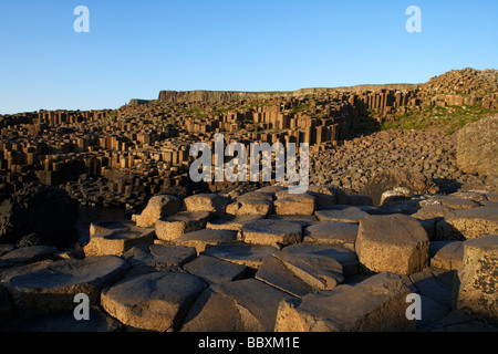 giants causeway county antrim coast northern ireland uk europe - Stock Photo