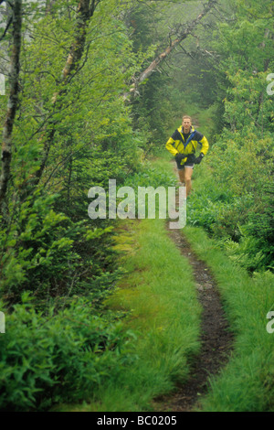 Male trail runner in a lush rainy forest. - Stock Photo
