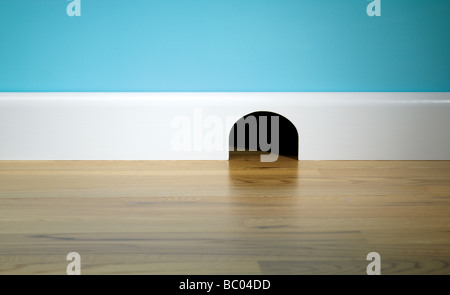 Mouse hole in skirting board - Stock Photo