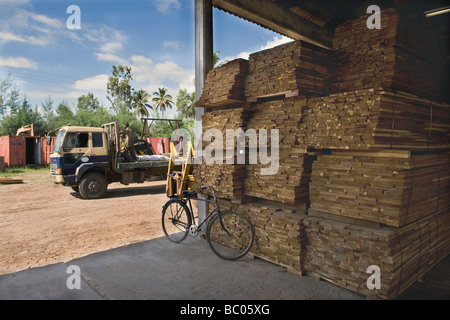 Hardwood planks for flooring cut for export in a sawmill Quelimane Mozambique - Stock Photo