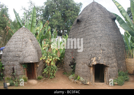 Africa Ethiopia Omo region Chencha Dorze Village Traditional elephant shaped straw hut - Stock Photo