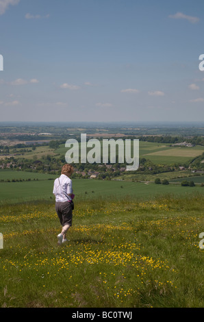 woman walking through a wildflower meadow on Cherhill Down near Calne in Wiltshire, with the Wiltshire countryside - Stock Photo