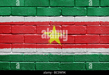 Flag of Suriname - Stock Photo