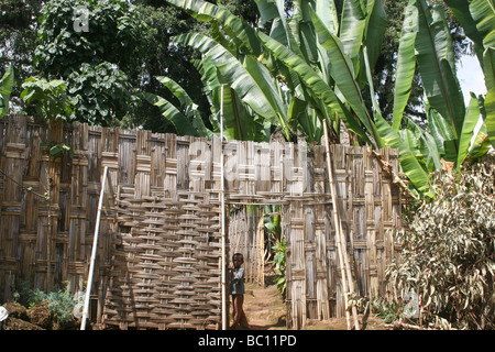 Africa Ethiopia Omo region Chencha children Dorze village - Stock Photo
