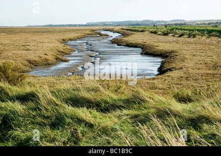A creek on the North Norfolk saltmarshes, England - Stock Photo