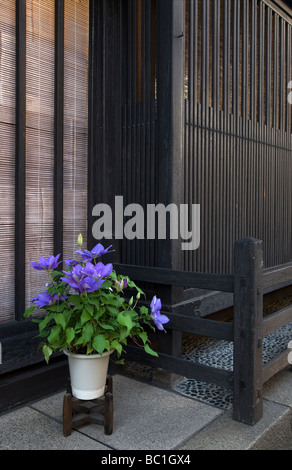 A potted flower  adds a bit of color to a traditional wooden lattice facade on a shop along Sannomachi street in - Stock Photo