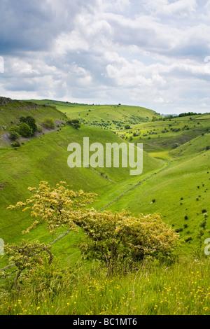 Cressbrook Dale,Peak District National Park, Derbyshire, England - Stock Photo
