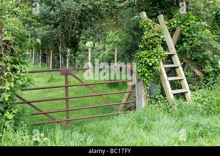 Rusty farm gate and wooden ladder stile at Rhydyronen on the southern edge of the Snowdonia National Park, Wales - Stock Photo