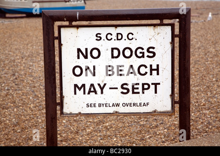 No Dogs on Beach sign - Stock Photo