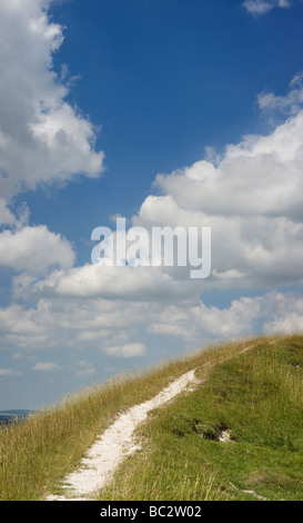 Chalk pathway on Chiltern hills. Aston Rowent , The Chilterns, Buckinghamshire, England - Stock Photo