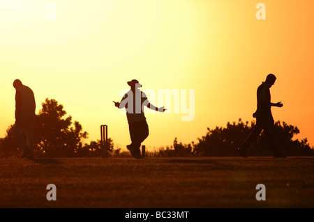 Umpire and two cricket players on a summer's evening. - Stock Photo