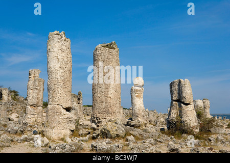 Bulgaria - North-east Region - the Dobrogea region - Pobiti Kamani (Stone Forest planted or petrified) - Stock Photo