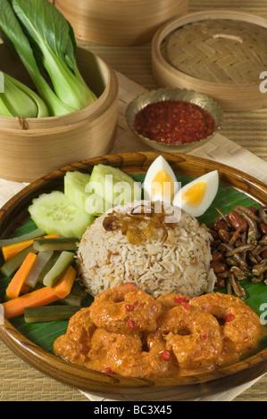 Nasi lemak Malaysia and Singapore Food - Stock Photo