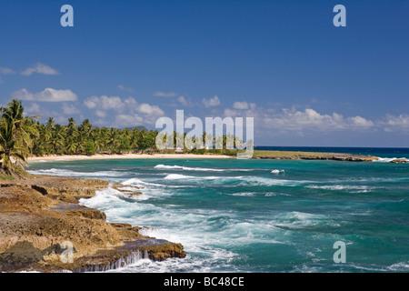 Dominican Republic - North Coast - Samana Peninsula - Between Samana and Las Galeras - Punta Balandra - Stock Photo