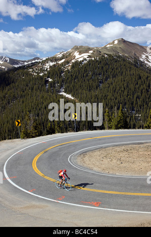 Cyclists riding up Independence Pass in Colorado during the annual Ride The Rockies bicycle tour - Stock Photo