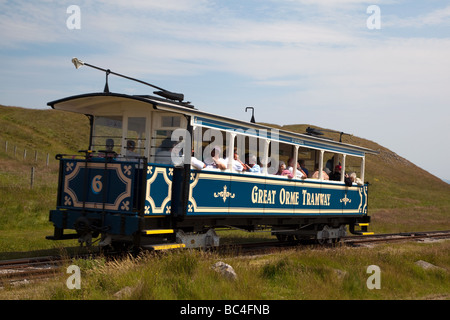 The Great Orme Tramway Tramcar going down The Great Orme at Llandudno North Wales.England - Stock Photo