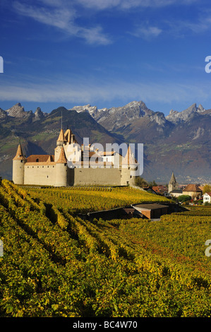 The Chateau at Aigle surrounded by vineyards in the early morning light. Space for text in the sky and on vines. - Stock Photo
