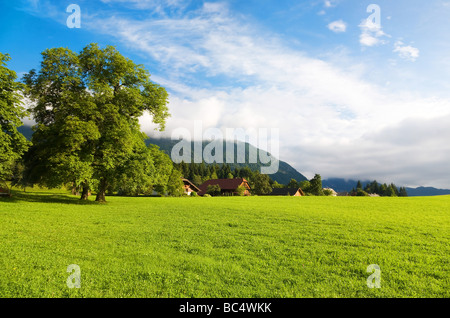 Alps morning landscape Wide angle view - Stock Photo