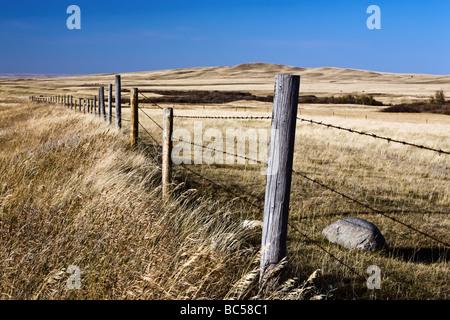 Cyprus Hills on the Canadian Prairies, Saskatchewan, Canada. - Stock Photo